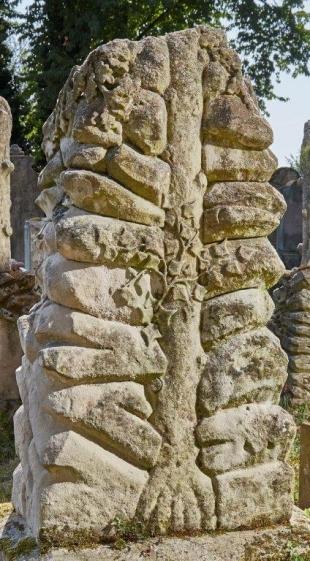 Eichenbaum und Efeu