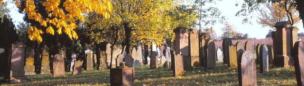 Friedhof - Heute