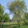 Ansicht Friedhof heute